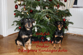 god jul 2012ll